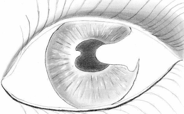 Encore un dessin en noir et blanc blog de un ange peut il mourire - Ange facile a dessiner ...